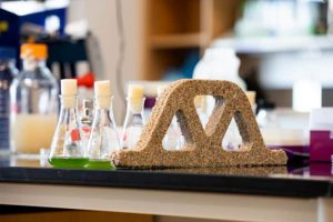 bacteria used in creation of building materials